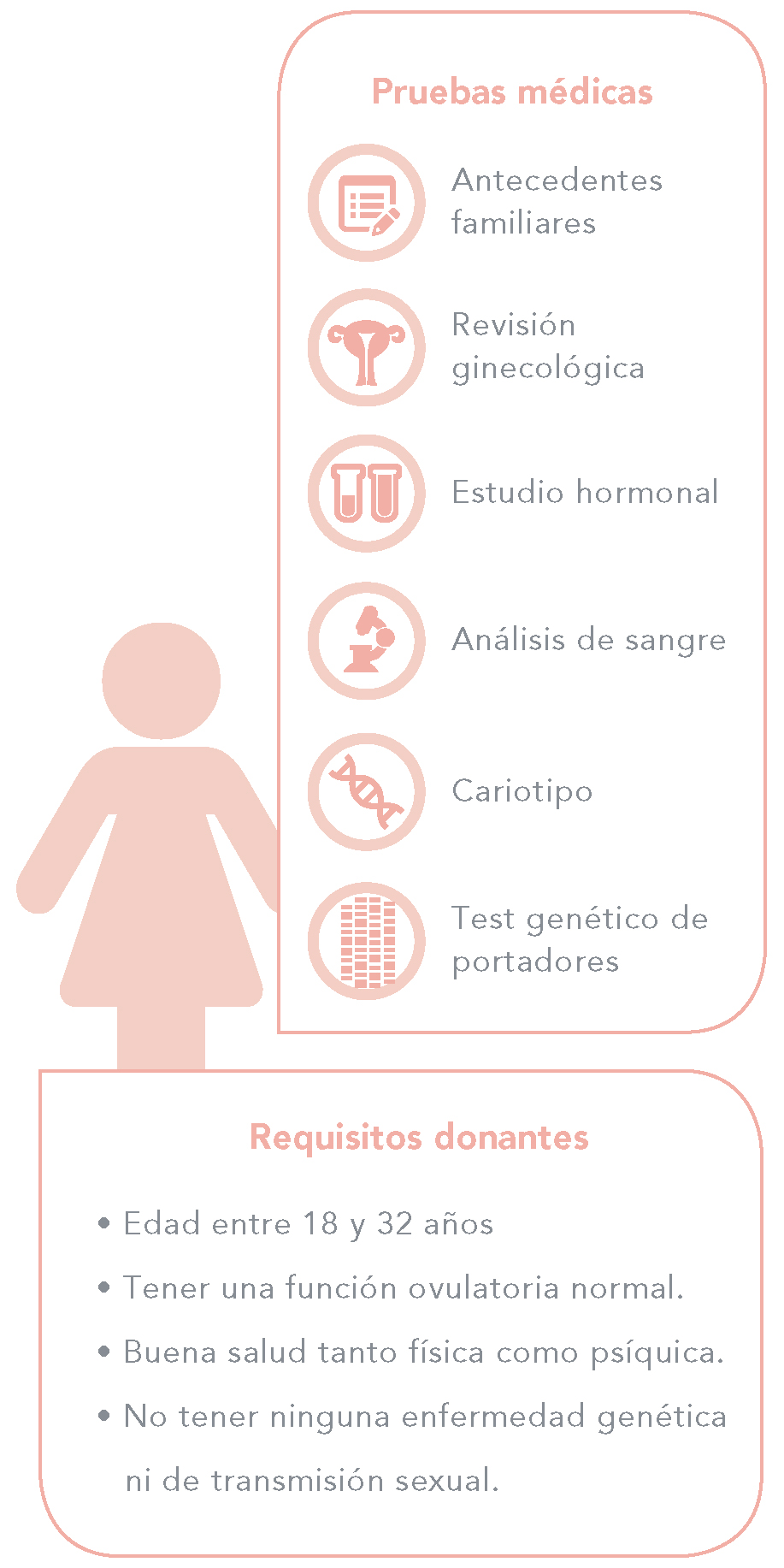 Requisitos donantes de óvulos - Mujeres
